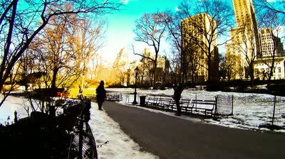 stock-footage-new-york-february-time-lapse-of-tourist-walking-through-central-park-in-new-york-city